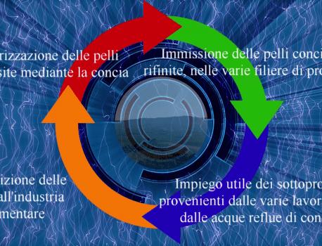 Economia circolare delle pelli italiane prodotte da Leonica spa